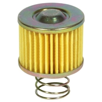 What type of Gasoline is used with this filter or This make and model (Nissan CPH02A25V)?